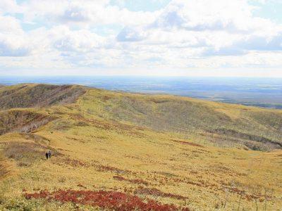 摩周岳登山道