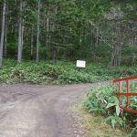 林道ゲートを越えて右折